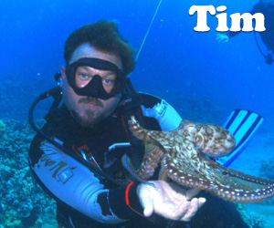 Tim is scuba diving on maui with an octopus