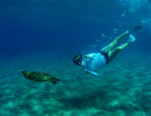 Snorkeler swimming with a Hawaiian Green Sea Turtle with Tiny Bubbles Scuba