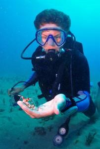 Scuba diver with a Banded Coral Shrimp and Tiny Bubbles Scuba