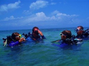 Tiny Divers learning water skills on the surface in 3 feet of water before the dive.