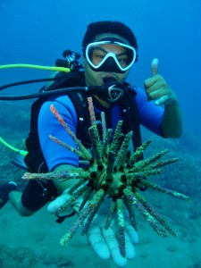 Rough Spine Sea Urchin and Scuba Diver with Tiny Bubbles Scuba in Maui